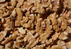 Walnut halves  background, close up, full frame royalty free stock photography