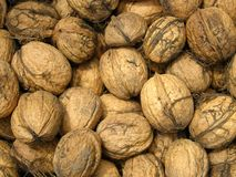 Walnuts detail background Royalty Free Stock Image