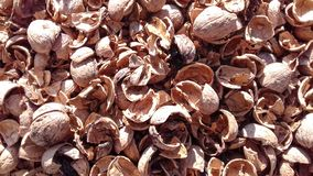 Walnuts nutshell natural dry fruit background Royalty Free Stock Photography