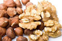 Walnuts and filberts hazelnut nutricious food clos Stock Images