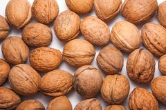 Walnuts on flat white background. Walnuts in shells on white background Stock Photography