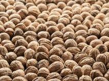 Walnuts. Food background. Royalty Free Stock Photos