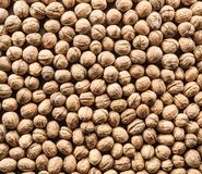 Walnuts. Food background. Stock Images