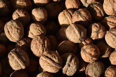 Walnuts. Food natural products background Royalty Free Stock Images