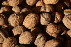 Walnuts. Food natural products background Stock Image