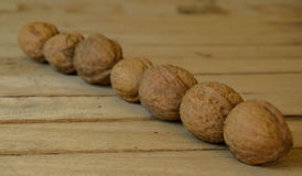 Walnuts. Fresh walnuts on a beautiful wooden table Stock Images