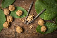 Walnuts. Fresh walnuts on an old wooden table Royalty Free Stock Photos