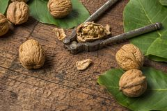 Walnuts. Fresh walnuts on an old wooden table Stock Images