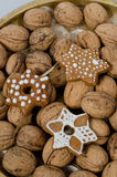 Walnuts and gingerbread cookies Royalty Free Stock Images