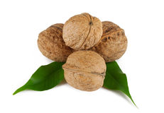 Walnuts with green leaves. On white background Stock Photos