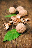Walnuts with green leaves close up Royalty Free Stock Photography