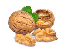 Walnuts with green leaves  on white Stock Photos
