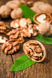 Walnuts with green leaves Royalty Free Stock Images