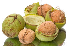 Walnuts in the green shell Royalty Free Stock Image