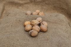 Walnuts on the grey sacking. Walnuts on the sacking fixed with a close-up photo shooting stock photo