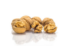 Walnuts Group. Tasty golden fresh walnuts group Royalty Free Stock Image