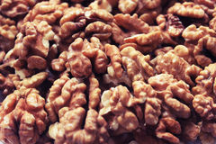 Walnuts - the guarantee of health and longevity. Stock Images