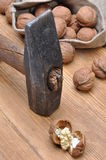 Walnuts and hammer Stock Images