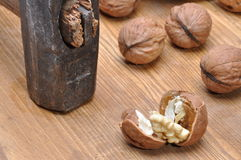 Walnuts and hammer Royalty Free Stock Images
