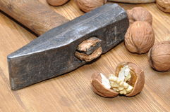 Walnuts and hammer Stock Image
