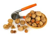 Walnuts and hazel. Nutcracker, walnuts and hazel isolated on white background stock photo