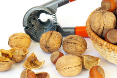 Walnuts and hazel on white Royalty Free Stock Photography