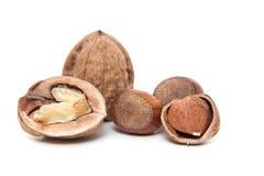 Walnuts and hazelnuts Stock Photo
