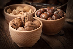 Walnuts, hazelnuts and almonds in-shell in wooden bowl. Royalty Free Stock Photography