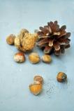 Walnuts, hazelnuts and almonds Royalty Free Stock Photography