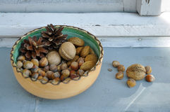 Walnuts, hazelnuts and almonds in shells Stock Images