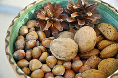 Walnuts, hazelnuts and almonds in shells Stock Photo