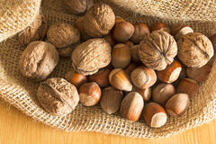 Walnuts and hazelnuts in a jute sack Royalty Free Stock Image