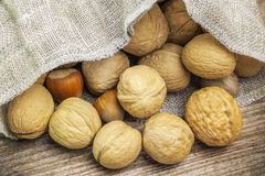 Walnuts with hazelnuts in linen bag on table Stock Photo
