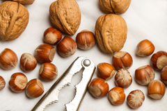 Walnuts, hazelnuts and nutcracker Royalty Free Stock Images