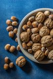 Walnuts and hazelnuts over blue board royalty free stock photography