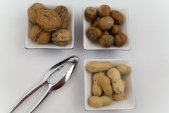 Walnuts, hazelnuts and peanuts in three bowls Royalty Free Stock Photography