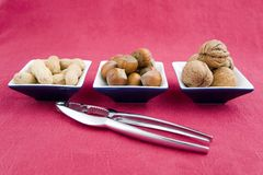 Walnuts, hazelnuts and peanuts in three bowls Stock Photography