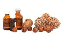 Walnuts, hazelnuts and pine nuts. Royalty Free Stock Image