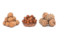 Walnuts, hazelnuts and pine nuts. The photo shows a handful of walnuts, forest and pine nuts Royalty Free Stock Photography