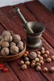 Walnuts and hazelnuts Royalty Free Stock Photos