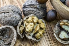 Walnuts and hazelnuts in the split form lie on a wooden background royalty free stock photography