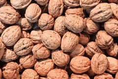 Walnuts Heap Stock Photos