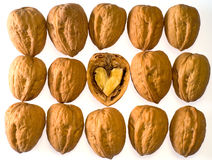 Walnuts with heart royalty free stock photos