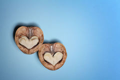 Walnuts heart, funny baqckground Valentine day Stock Image