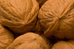 Walnuts II Royalty Free Stock Photo