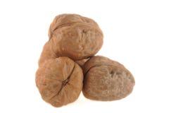 Walnuts  isolated Royalty Free Stock Photography