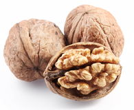 Walnuts isolated. Stock Photos