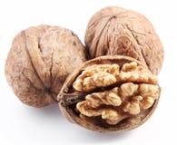 Walnuts isolated. stock photos