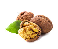 Walnuts isolated Royalty Free Stock Photo