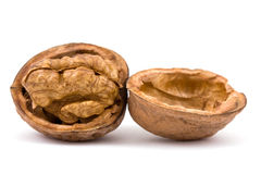 Walnuts  on  isolated Royalty Free Stock Image